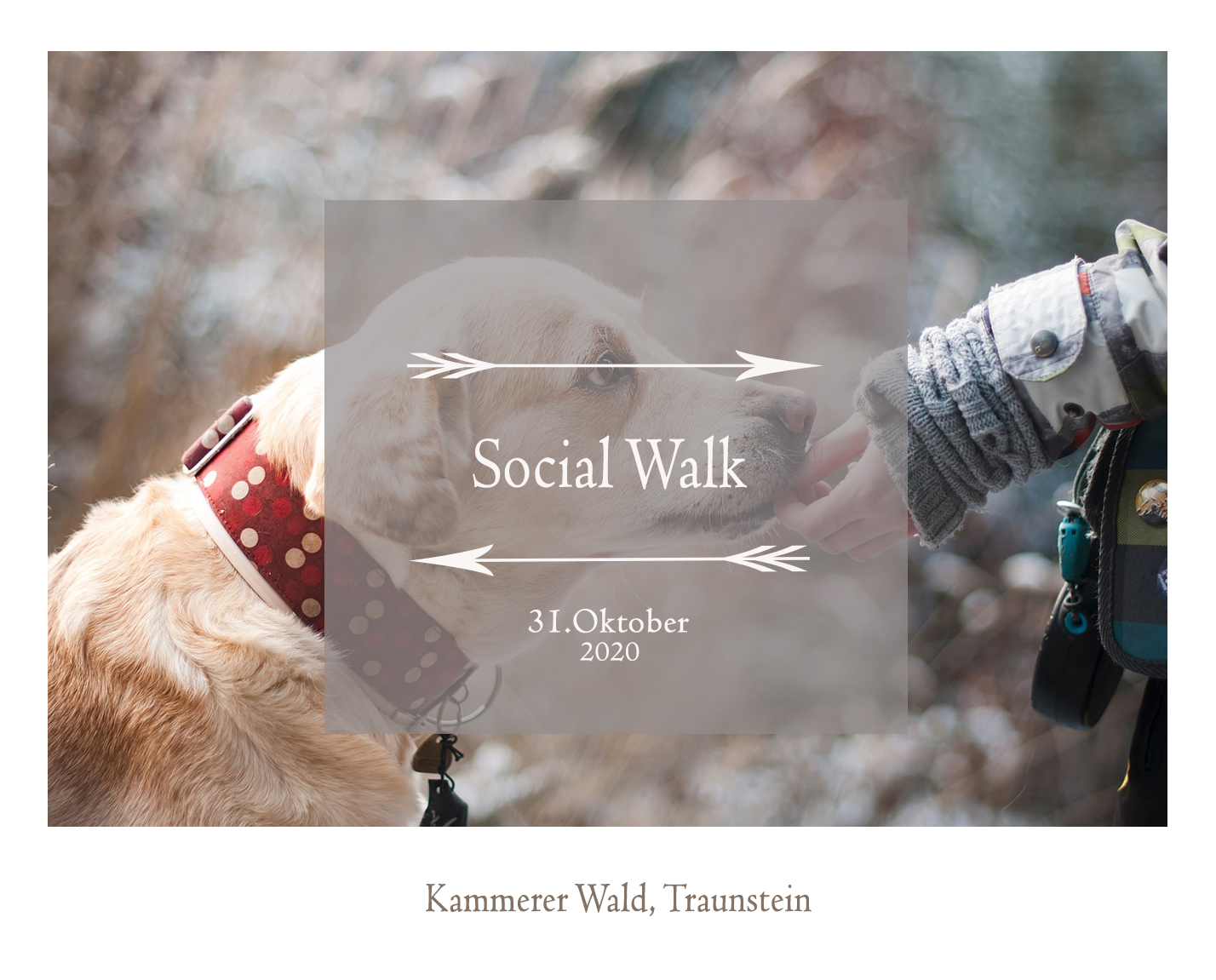 SocialWalk31.Oktober2020